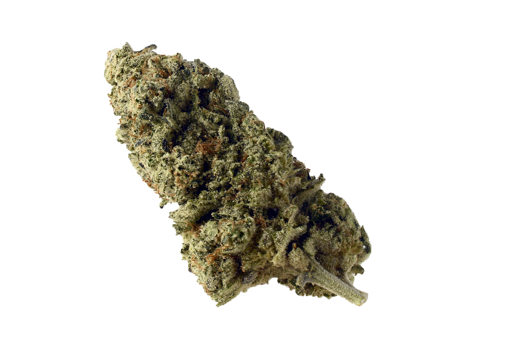 """Image result for Green Magic strain"""" best weed in Amsterdam"""
