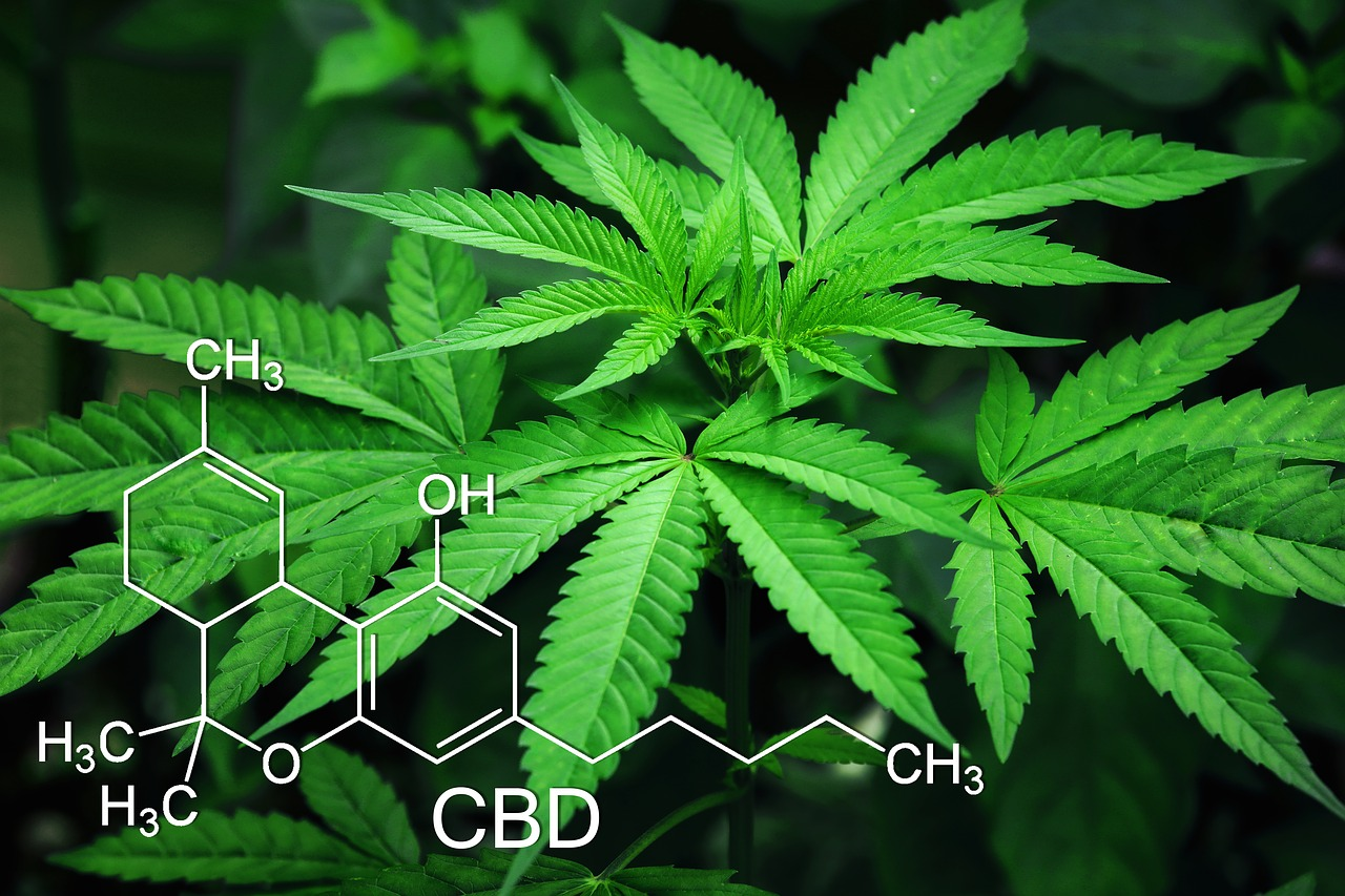 cbd molecule with hemp on background