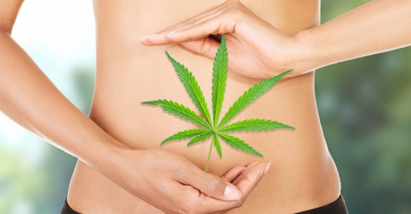 cbd thc stomach belly digestive system
