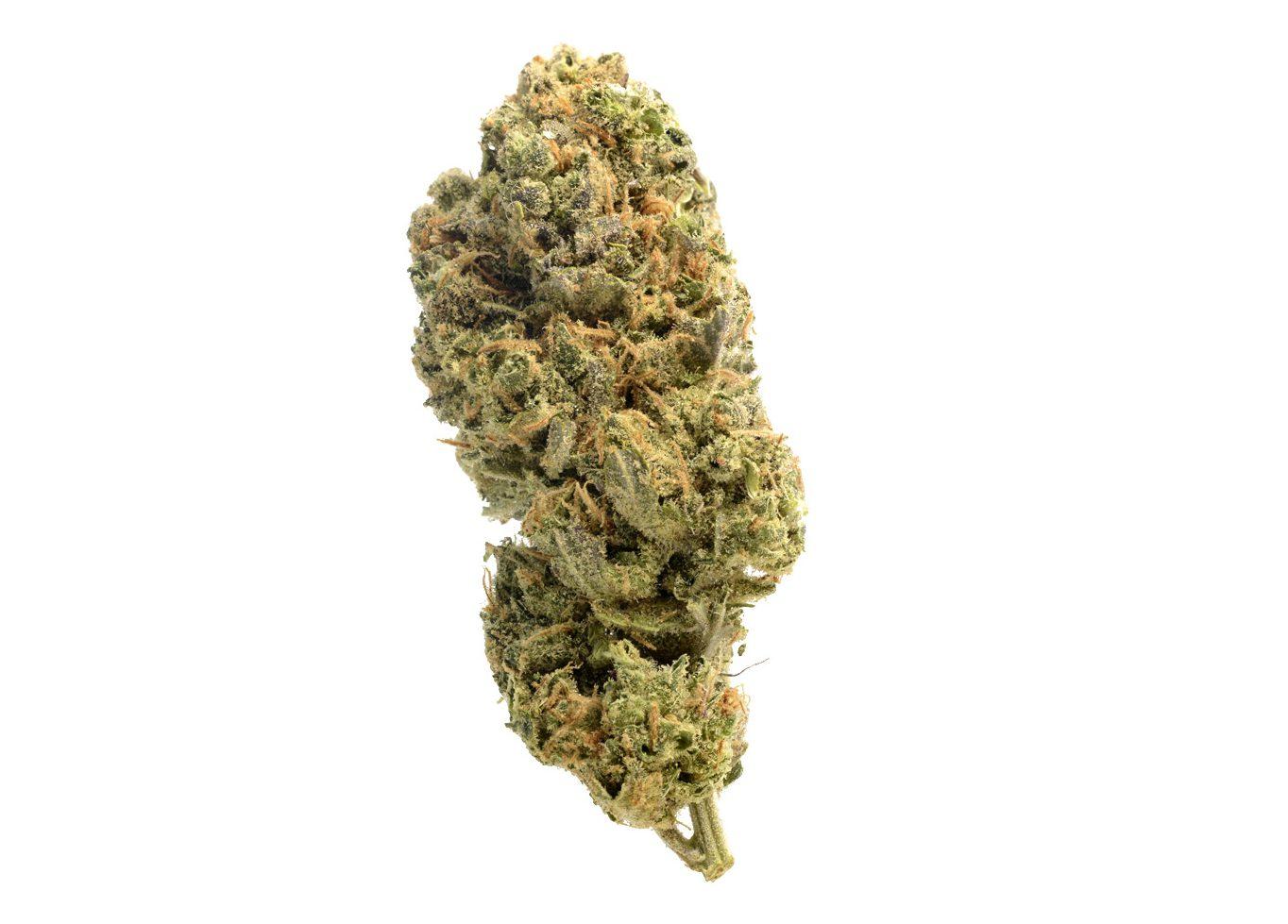 Grapefruit Superstar cannabis