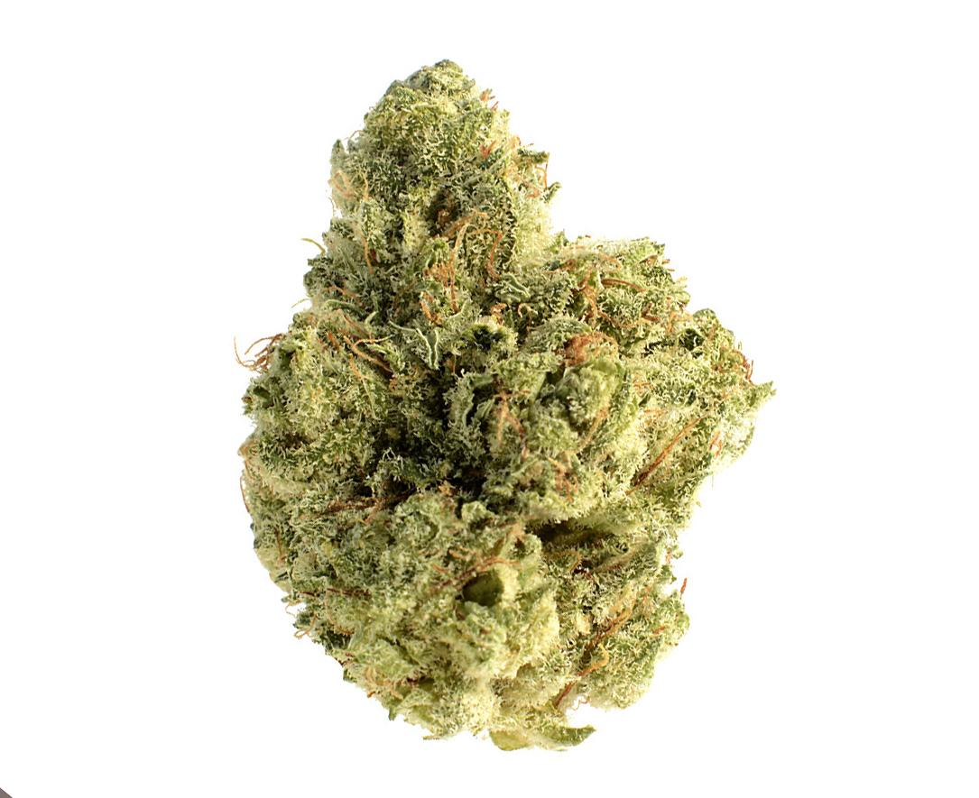 Skywalker Saga cannabis