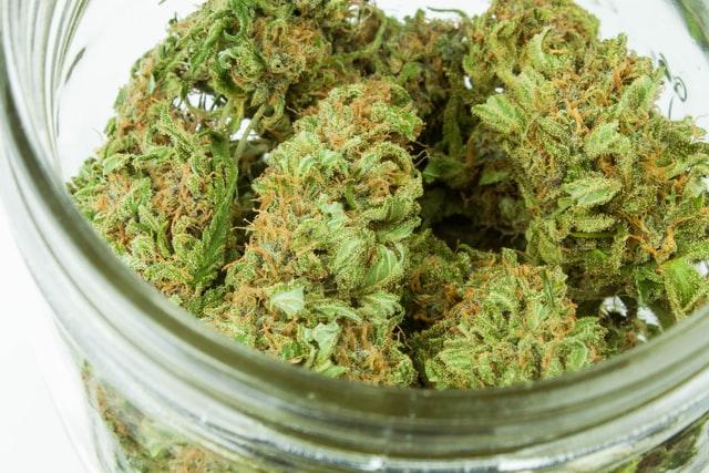 Cannabis angst
