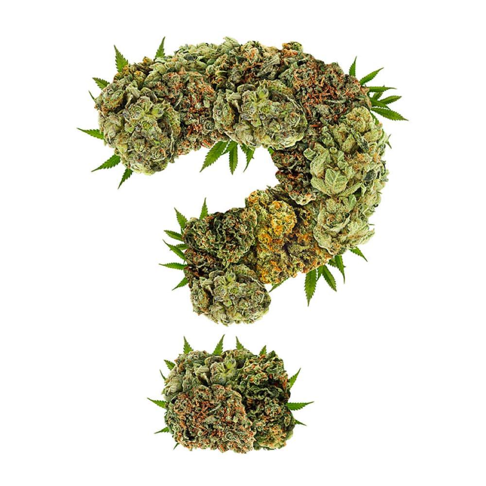 best cannabis strains against pain