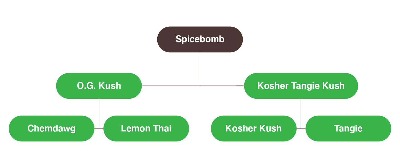 spicebomb marijuana seeds